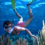 snorkeling Puerto Vallarta