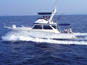 40 ft size boat