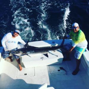 marlin fishing in Puerto Vallarta