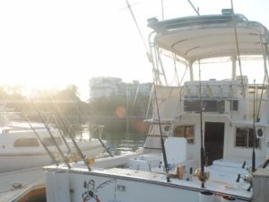 puerto vallarta sport fishing 32'