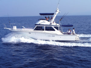 40ft Sport Fisher