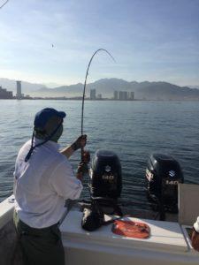 puerto vallarta fly fishing