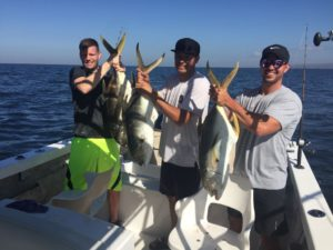 puerto vallarta fishing report