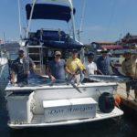 puerto vallarta mexico marlin action