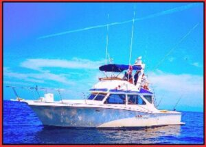 fishing boats in puerto vallarta