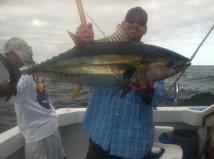 puerto vallarta calendar tuna