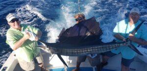 sailfish in puerto vallarta