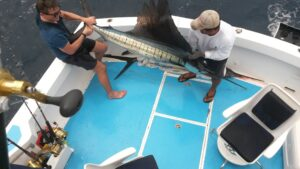 puerto vallarta fishing trips